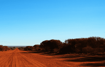 Forecasting the social return on investment of central Australian youth programs