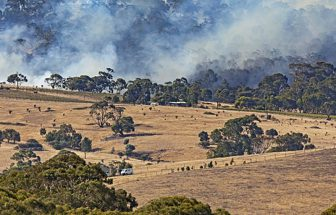 Major incident reviews of the WA bushfires